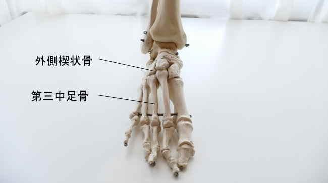 外側楔状骨と中足骨の関節