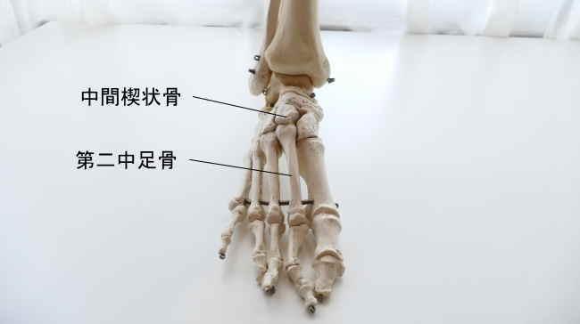 中間楔状骨と中足骨の関節