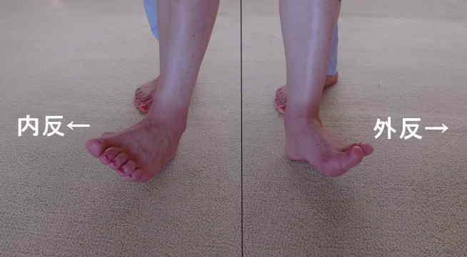 横足根関節の動き