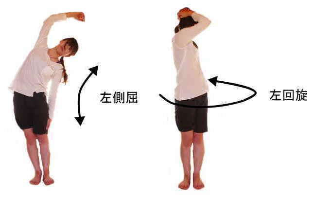 脊柱の動き、側屈と回旋