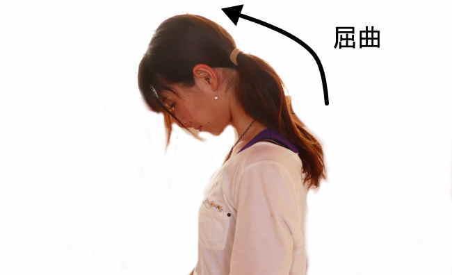 頚椎の屈曲