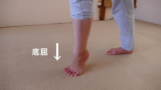 ヒラメ筋の足関節の底屈