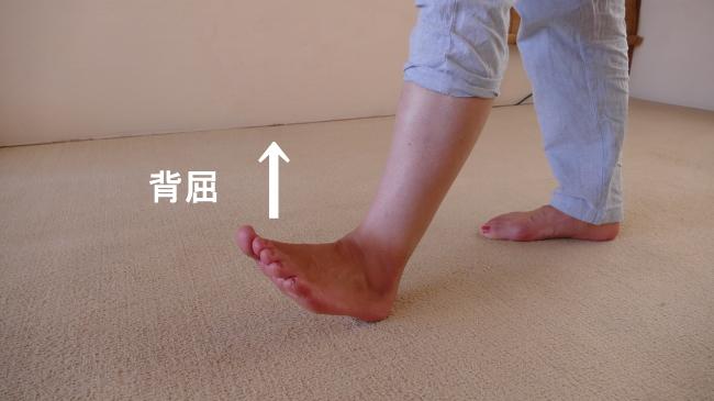 長母趾伸筋の背屈