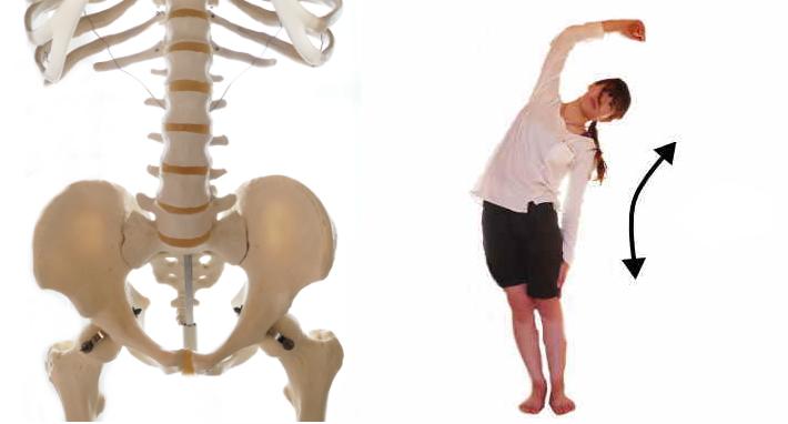 腹筋の腰椎の側屈