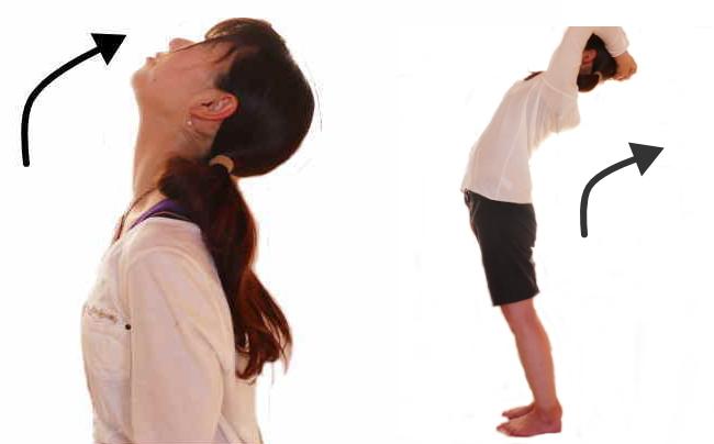 脊柱の伸展の動き