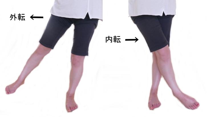 股関節の外転と内転の動き