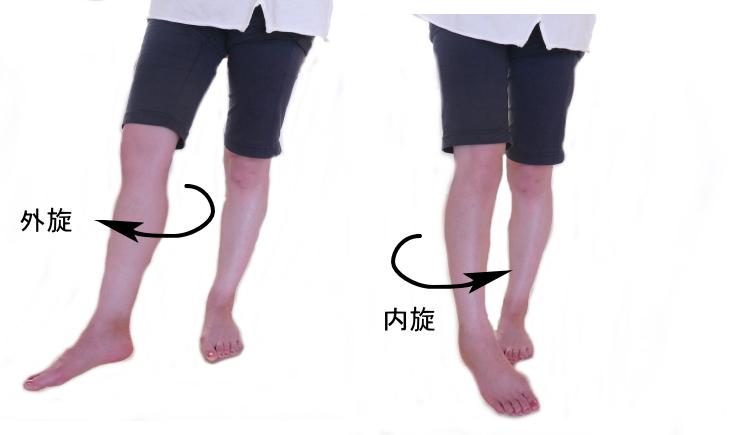 股関節の外旋と内旋の動き