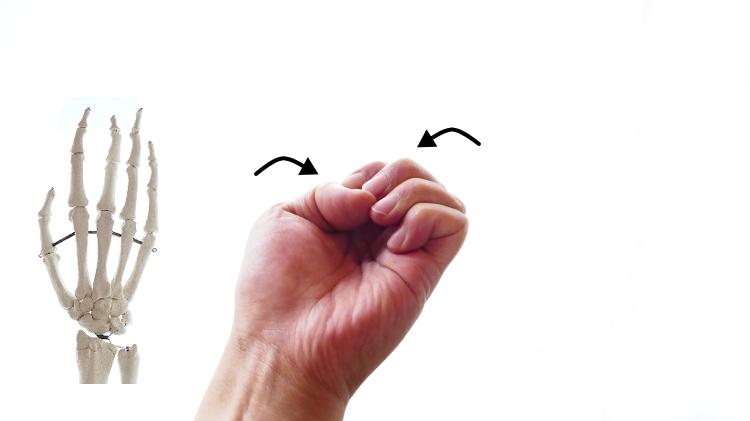 手の指の屈曲の動き