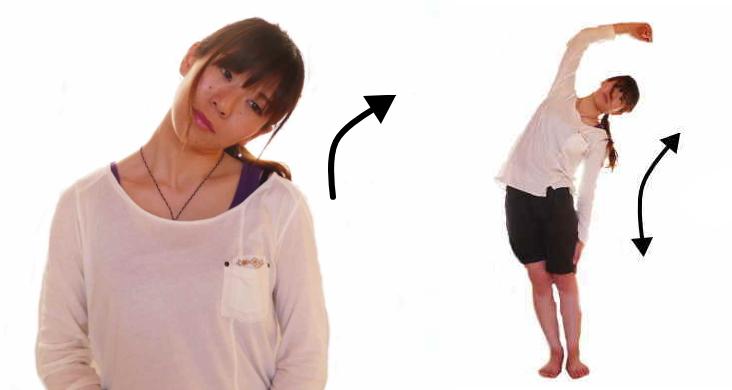 脊柱起立筋の側屈の働き