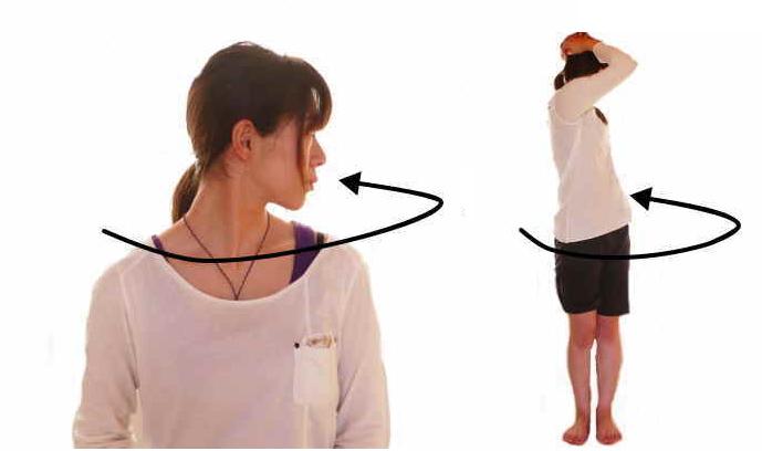脊柱の回旋の動きと筋肉