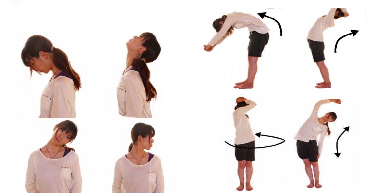 脊柱の動きと筋肉