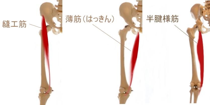 鵞足部のストレッチ