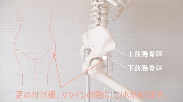 股関節をほぐすポイント